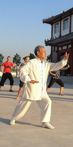 Learn Tai Chi and Baji